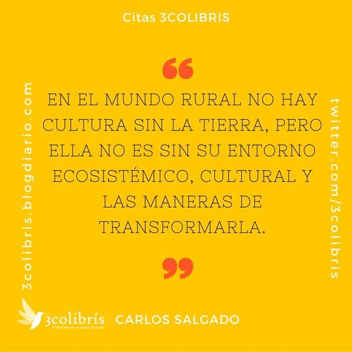 Carlos Salgado c1. 3colibris