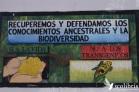 En en La Tinta, departamento de Alto Verapaz, comunidades locales se resisten a utilizar agroquímicos, pese a la presencia de latifundios de cardamomo y café en los que predomina la concentración de la tierra y el uso de agrotóxicos. Fuente: 3Colibrís.