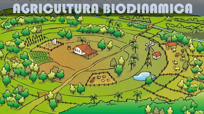 agricultura-biodinamica-c