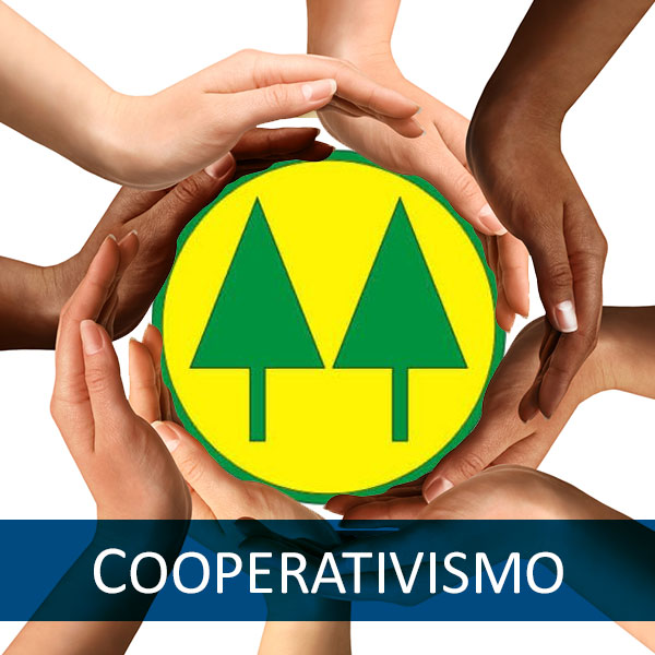 cooperteto_cooperativismo_home