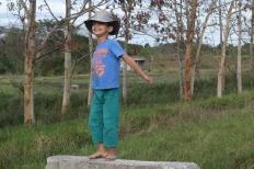 José Casimiro nieto, el presente y futuro de la agricultura cubana. Fuente: 3Colibrís.