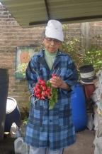Acompañamos la cosecha de rábanos que sería vendidos a comensales quiteños en el mercado agreocológico de La Floresta. Fuente: 3Colibrís.