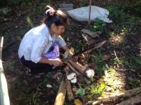 Mama Mauricia nos enseña a sacar semillas de plátano. Fuente: 3Colibrís.
