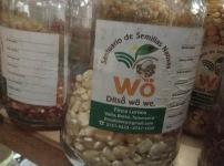 Ditso Wo, es una iniciativa liderada por la comunidad indígena Bribri, conectada con la red de guardianes de semillas de Costa Rica, que a su vez pertenece a la Red Latinoamericana de semillas libres en defensa de las semillas nativas. Fuente: 3Colibrís.
