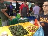 Los mercados agroecológicos son una de las principales fuentes de generación de ingresos para los productores locales en la provincia de Limón. Fuente: 3Colibrís.