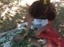 En el país de los 45 minutos, los campesinos aprovechan lo que tienen a su alcance para desarrollar proyectos agróecológicos. Fuente: 3colibrís.